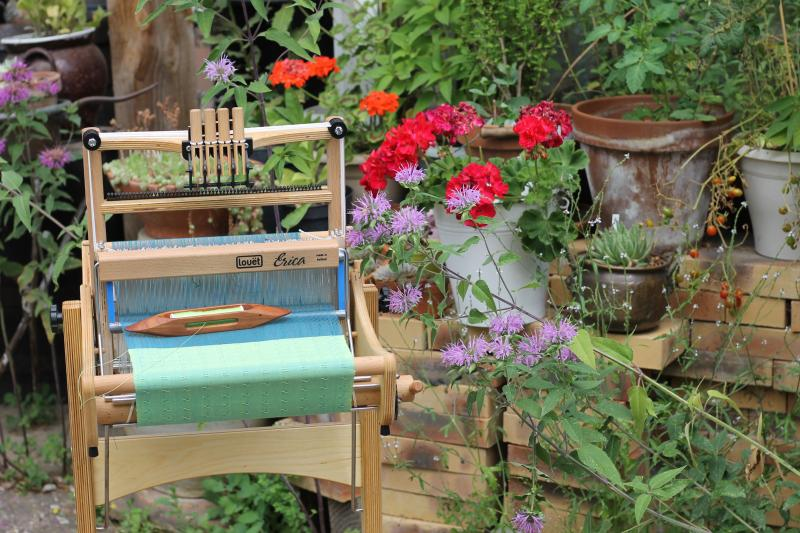 http://tricofolk.free.fr/Divers/erica-fleurs.jpg